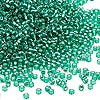Seed bead, Dyna-Mites™, glass, silver-lined transparent jade green, #11 round. Sold per 1/2 kilogram pkg.
