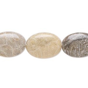 bead, brown fossil coral (natural), 18x13mm flat oval, b grade, mohs hardness 6-1/2 to 7. sold per 16-inch strand.