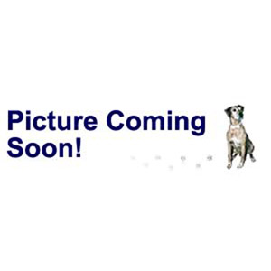 bead, swarovski crystals and stainless steel grommets, crystal passions, crystal clear, 14x9.5mm becharmed briolette with 4.5mm hole (5948). sold per pkg of 12.