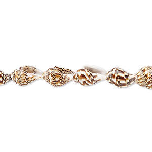 bead, tiger nassa shell (natural), 7x4mm-12x7mm, mohs hardness 3-1/2. sold per 36-inch strand.