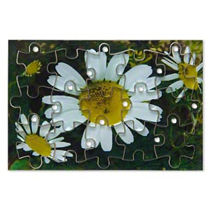 drop, acrylic, multicolored, 3x2 inch puzzle with daisy image and 20x15mm individual pieces. sold per 15-piece set.