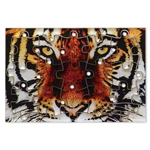 drop, acrylic, multicolored, 3x2 inch puzzle with tiger image and 20x15mm individual pieces. sold per 15-piece set.