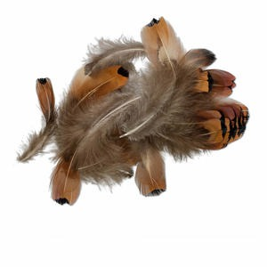 feather, pheasant (natural), 1-1/2 x 1/2 to 4x1 inches with natural heart. sold per 0.07-ounce pkg, approximately 60-100 feathers.