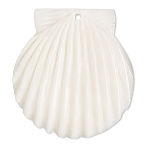 focal, bone (bleached), white, 38x37mm hand-carved single-sided shell, mohs hardness 2-1/2. sold per pkg of 2.