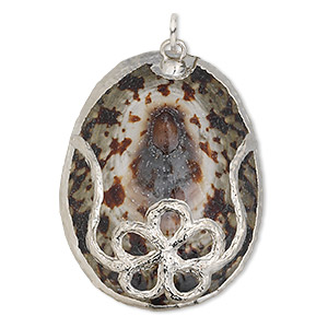 focal, common turtle limpet shell (natural) and silver-plated copper, brown, 36x28mm-44x34mm, mohs hardness 3-1/2. sold individually.