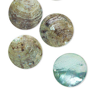focal, mussel shell (dyed / coated), blue, 40mm flat round. sold per pkg of 6.